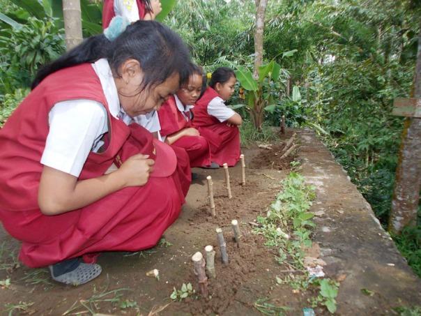 presentasi-dan-menjawab-pertanyaan-yang-diajukan-guru-perkembangbiakan-vegetafi-buatan-pada-tumbuhan