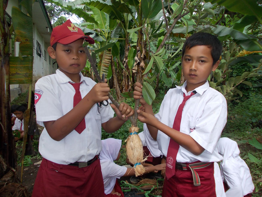 ilmu-baru-akan-didapatkan-saat-kita-praktik-langsung-perkembangbiakan-vegetafi-buatan-pada-tumbuhan