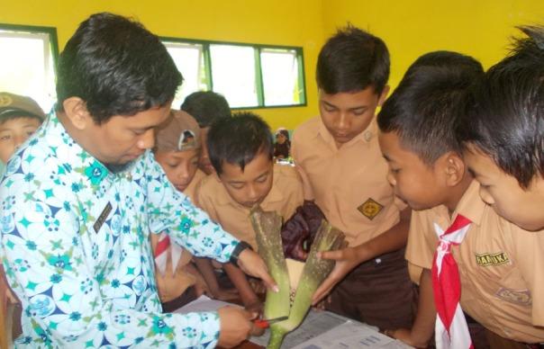 menariknya-balajar-secara-nyata-problem-based-learning-ayo-mendidik