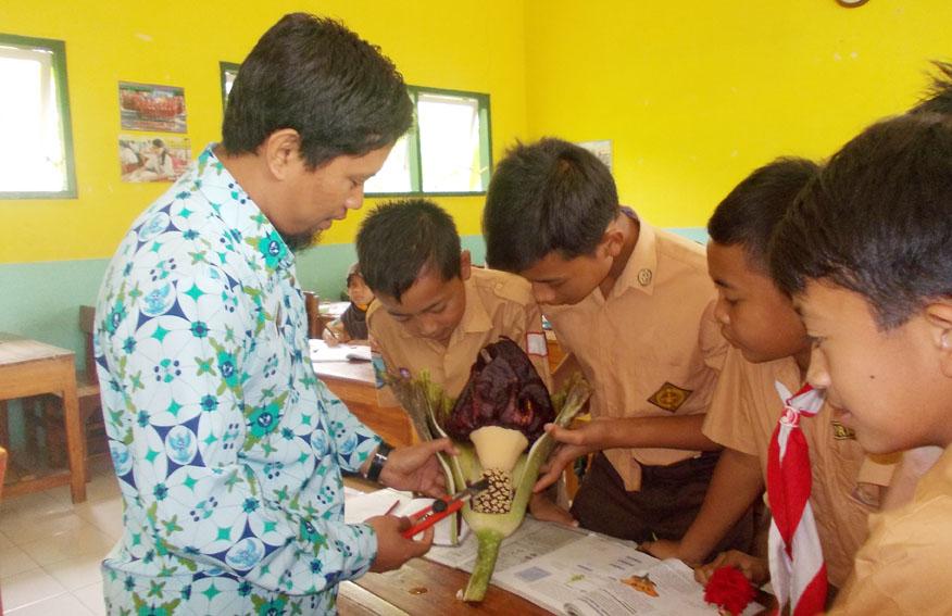 mengamatai-bunga-aneh-mencari-nama-bagian-bagian-bunga-tersebut-problem-based-learning-ayo-mendidik